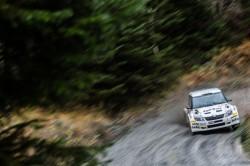 WRC2015-11