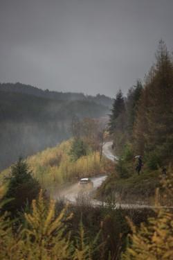 WRC2015-24