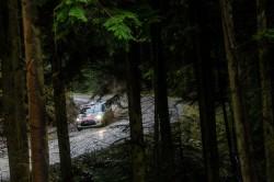 WRC2015-25