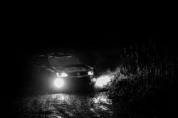 WRC2015-32