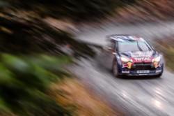 WRC2015-8
